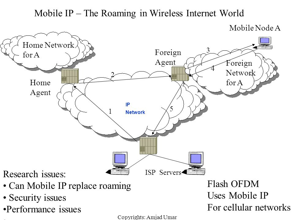 Mobile IP – The Roaming in Wireless Internet World