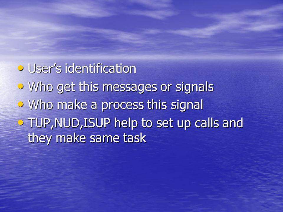 User's identification