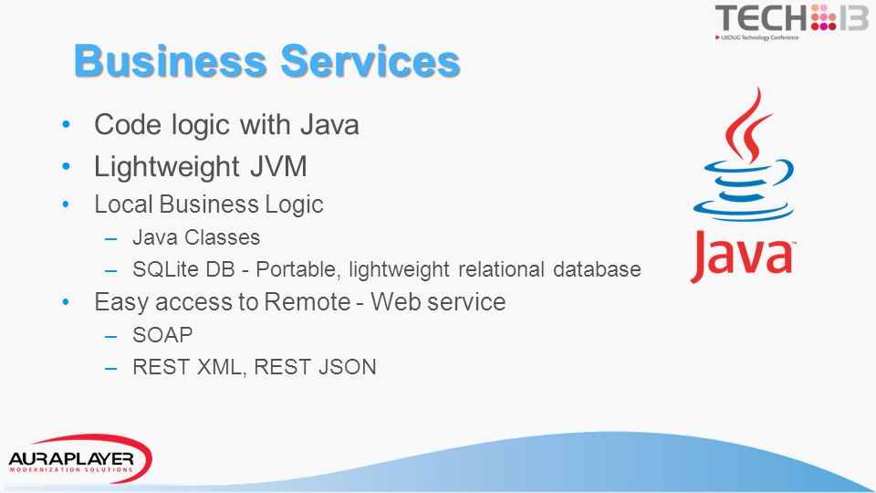 Business Services Code logic with Java Lightweight JVM