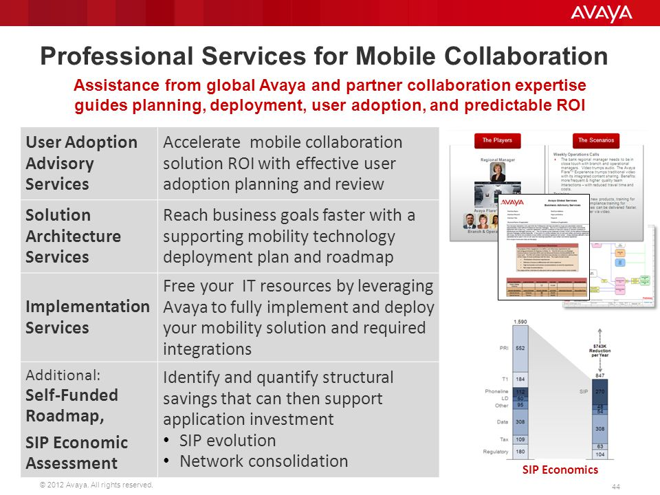 Professional Services for Mobile Collaboration