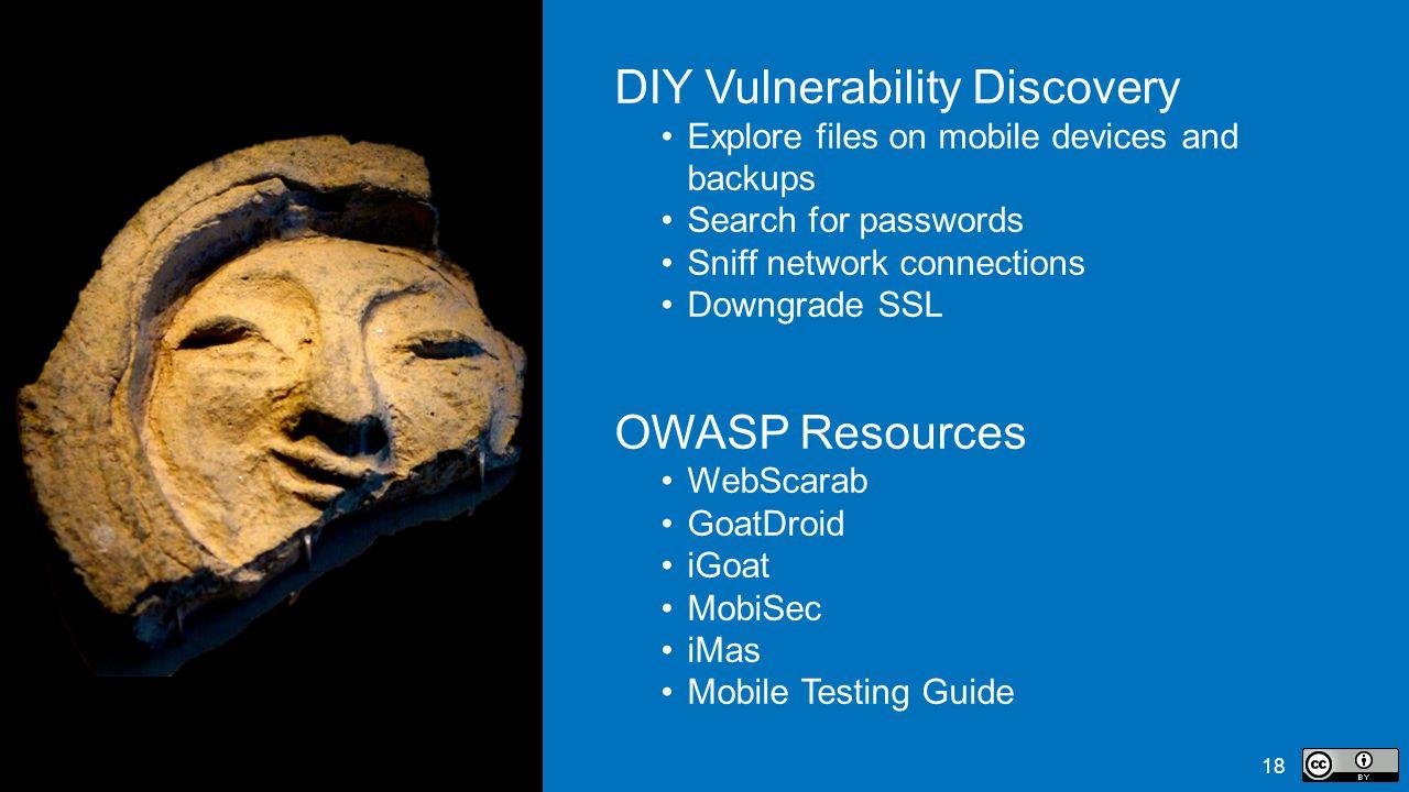 DIY Vulnerability Discovery
