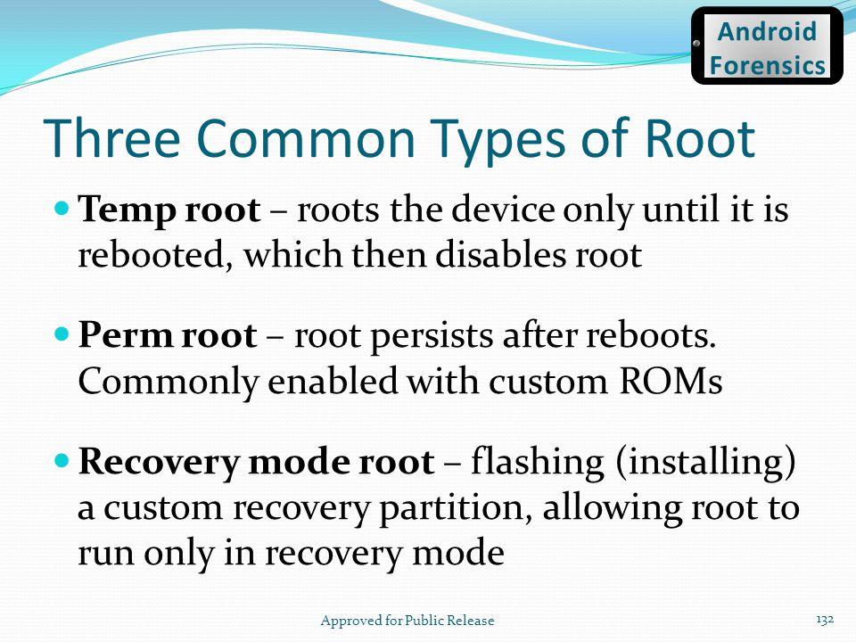 Three Common Types of Root