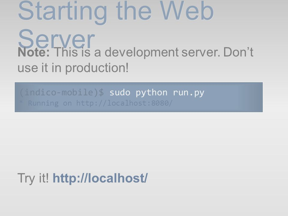 Starting the Web Server