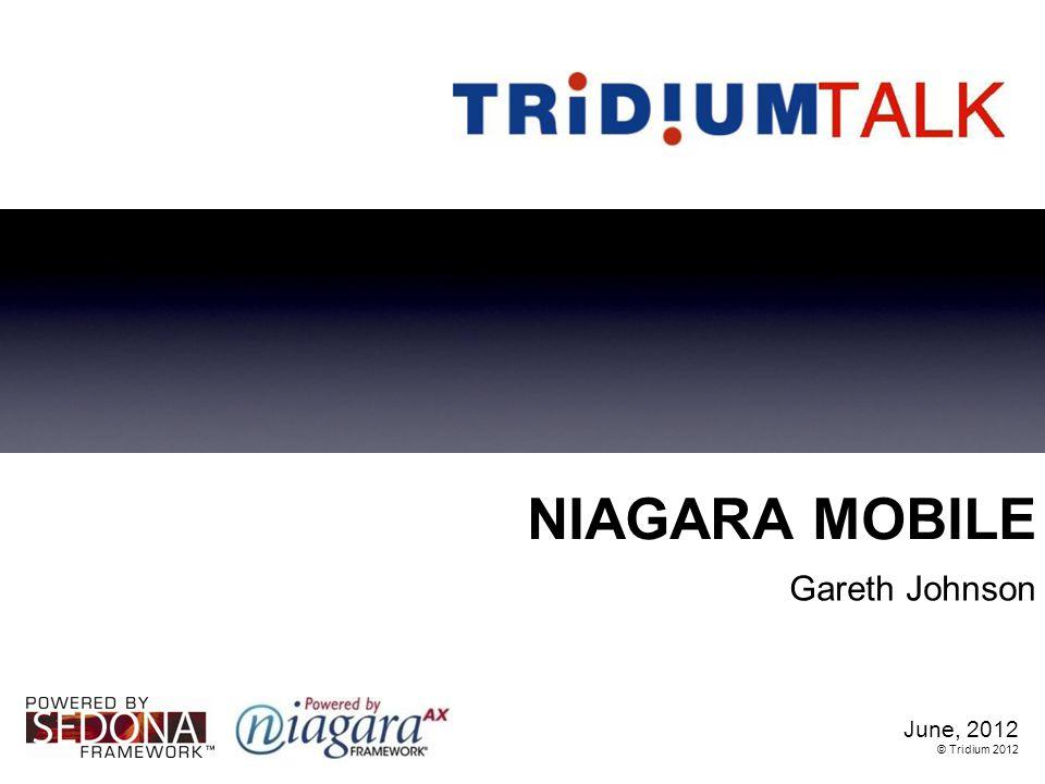 NIAGARA MOBILE Gareth Johnson June, 2012 © Tridium 2012