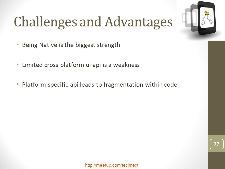 Challenges and Advantages