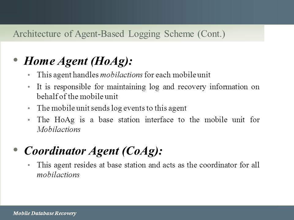 Architecture of Agent-Based Logging Scheme (Cont.)