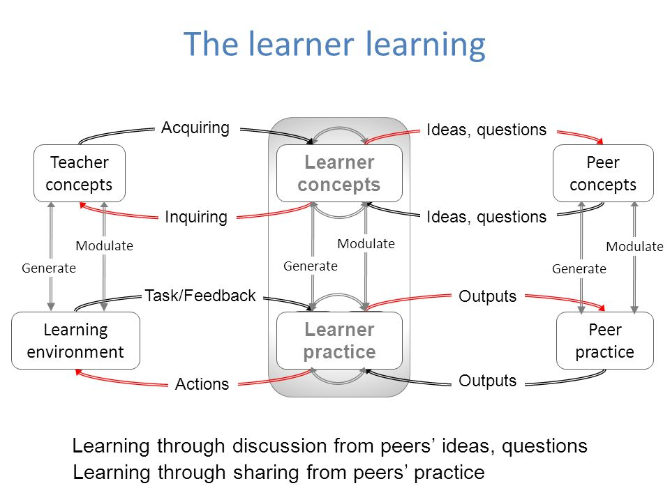 The learner learning Acquiring. Ideas, questions. Teacher concepts. Learner concepts. L. C. L.