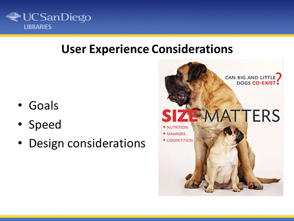 User Experience Considerations