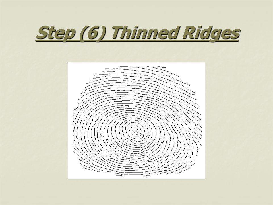 Step (6) Thinned Ridges
