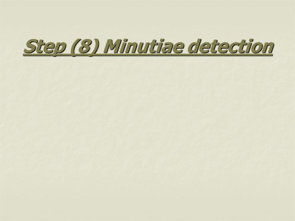 Step (8) Minutiae detection