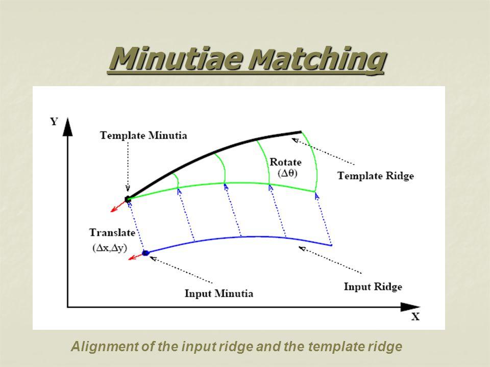 Minutiae Matching Alignment of the input ridge and the template ridge