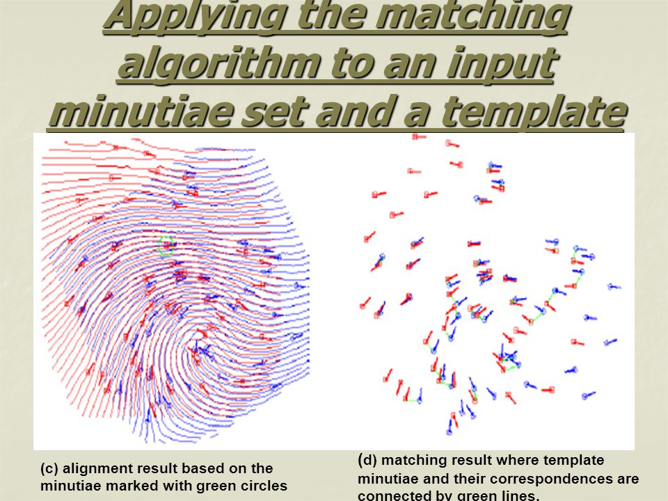 Applying the matching algorithm to an input minutiae set and a template (Cont.)