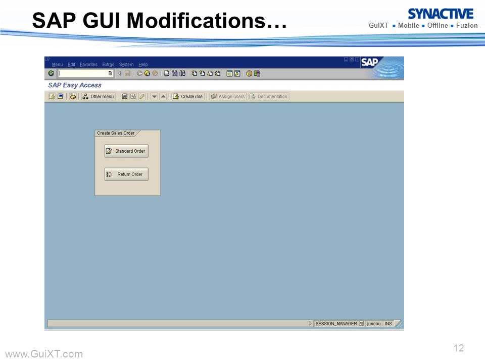 SAP GUI Modifications…