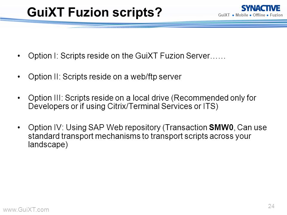 GuiXT Fuzion scripts Option I: Scripts reside on the GuiXT Fuzion Server…… Option II: Scripts reside on a web/ftp server.
