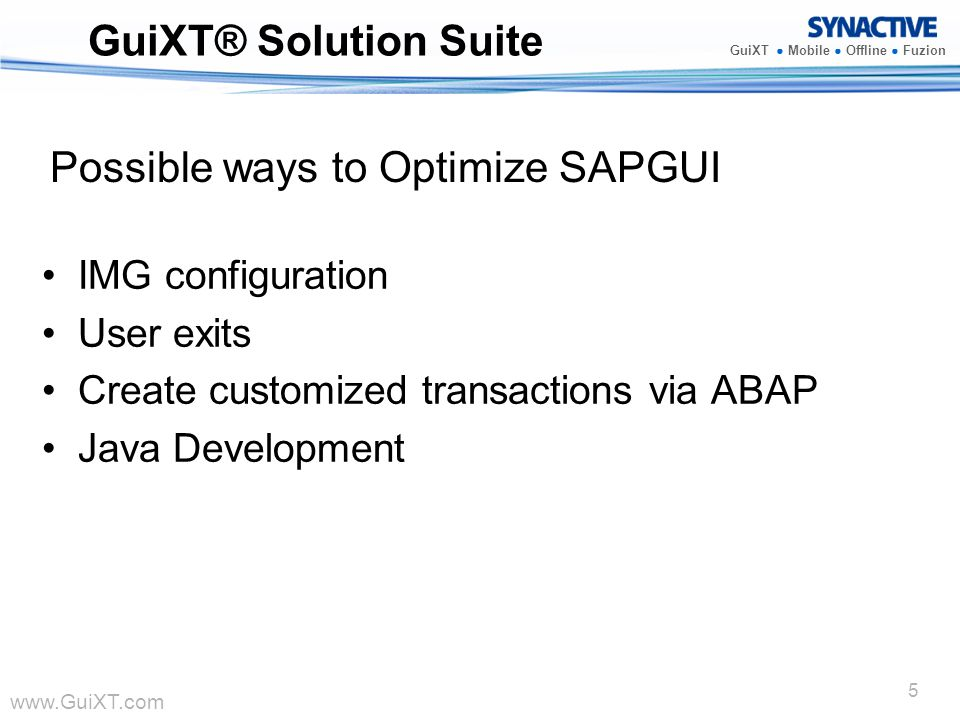 Possible ways to Optimize SAPGUI