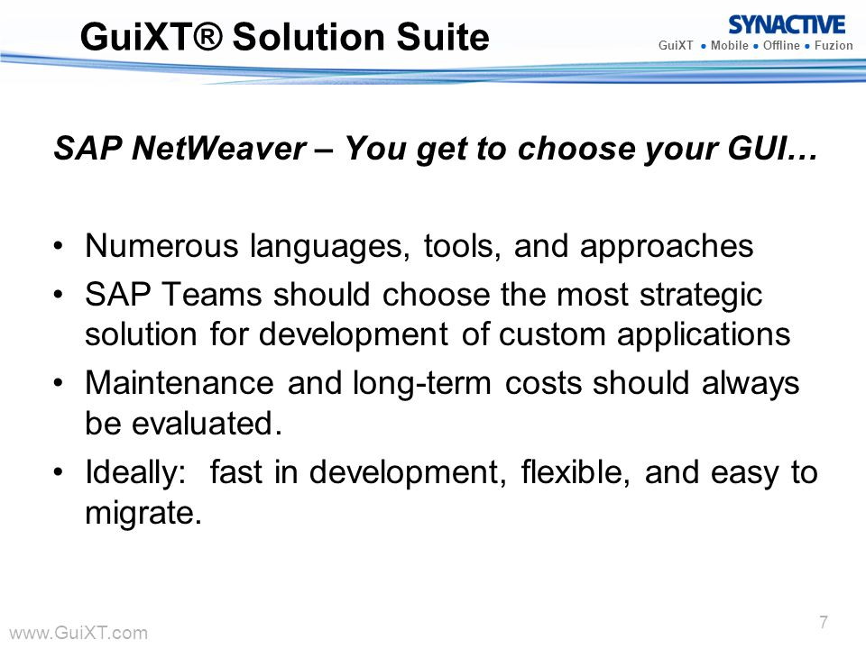 GuiXT® Solution Suite SAP NetWeaver – You get to choose your GUI…