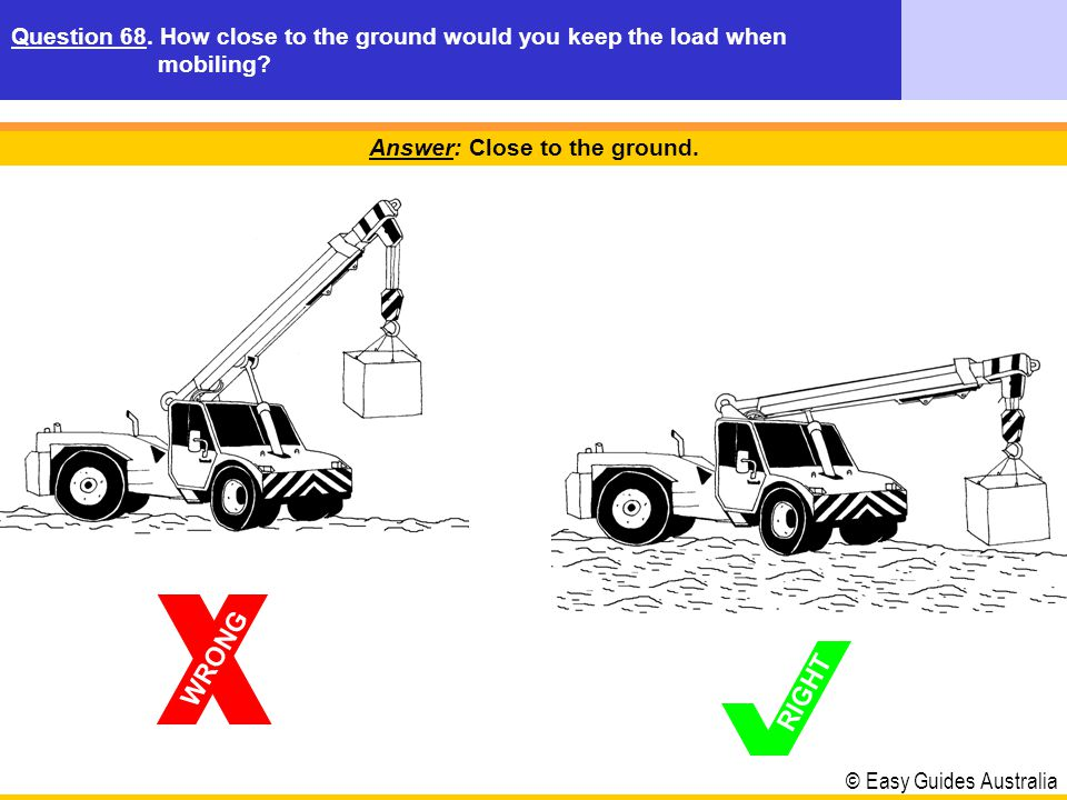 Answer: Close to the ground.