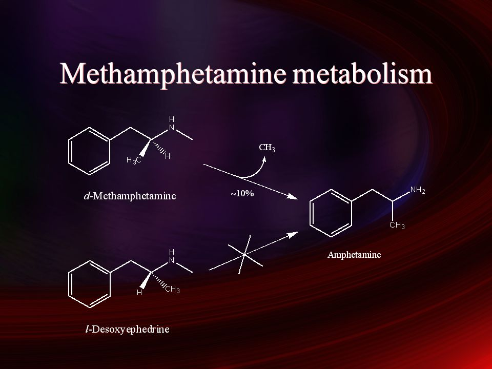 Methamphetamine metabolism