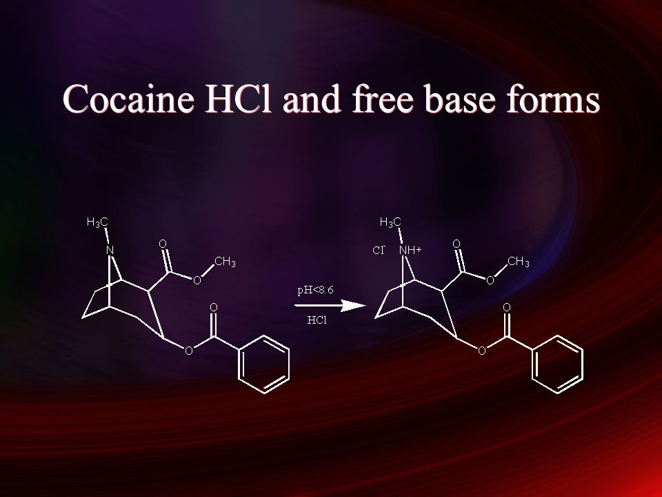 Cocaine HCl and free base forms