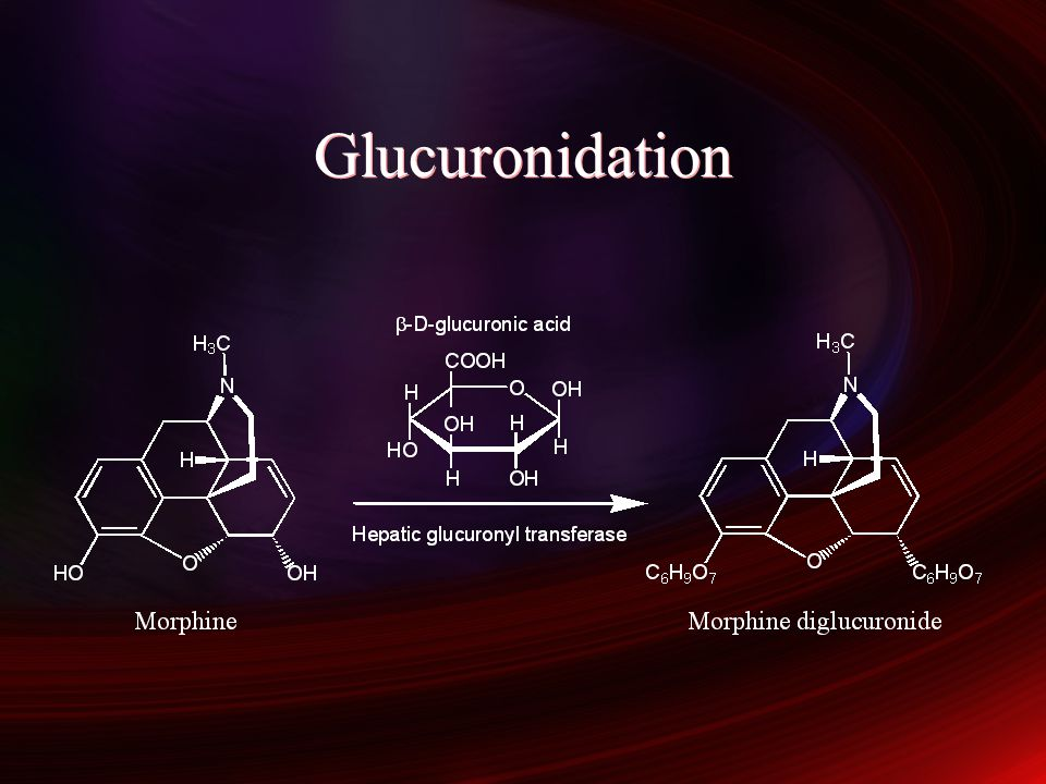 Glucuronidation