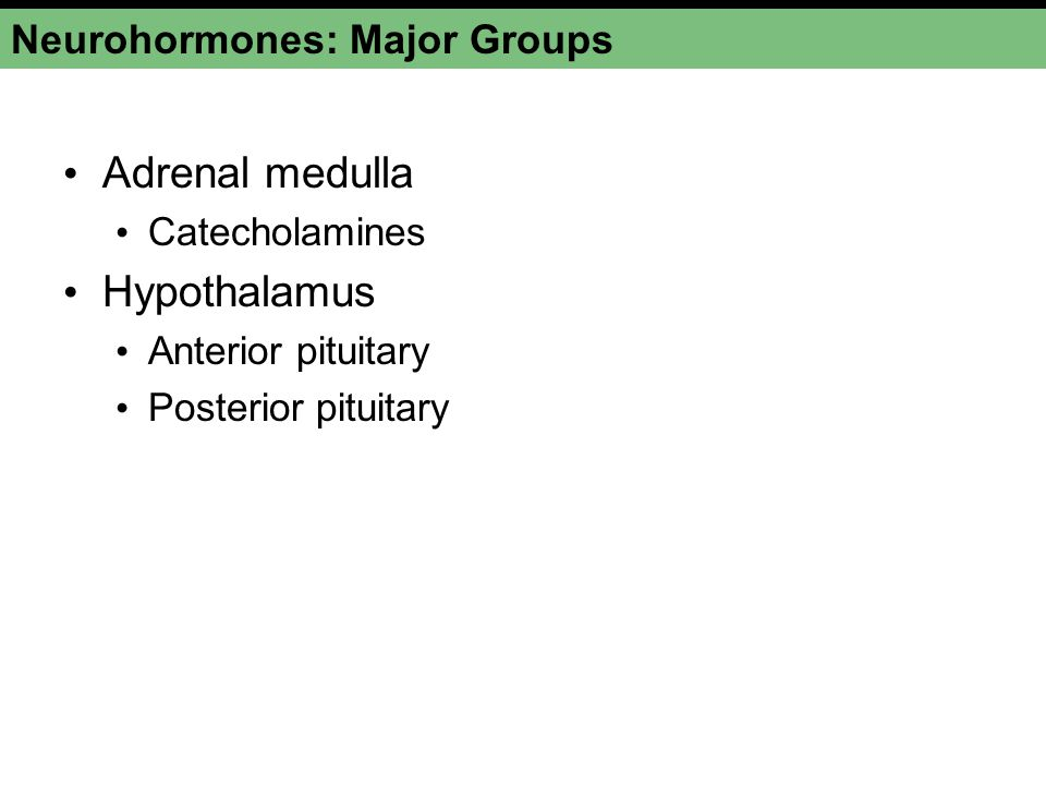 Neurohormones: Major Groups