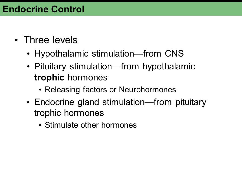 Three levels Endocrine Control Hypothalamic stimulation—from CNS