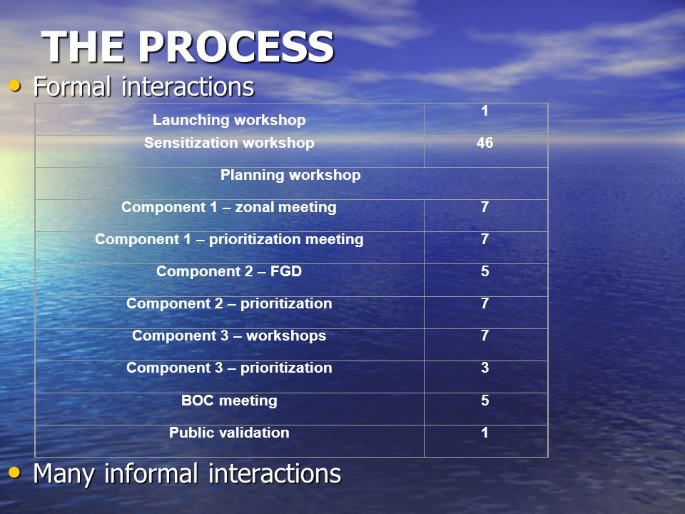 THE PROCESS Formal interactions Many informal interactions