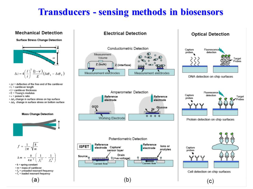 Transducers - sensing methods in biosensors