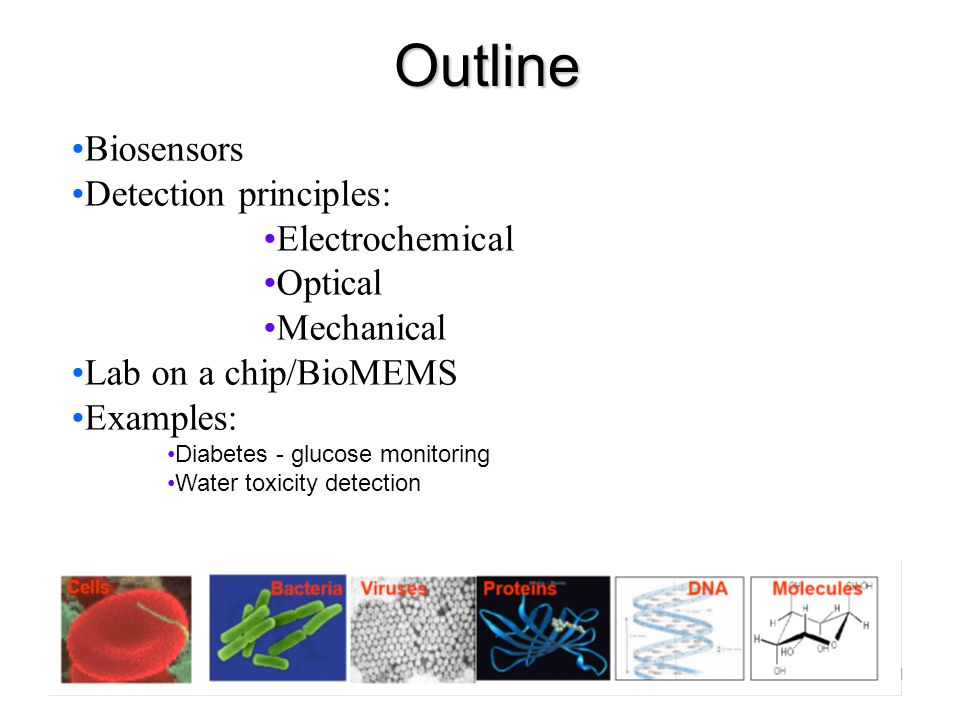 Outline Biosensors Detection principles: Electrochemical Optical