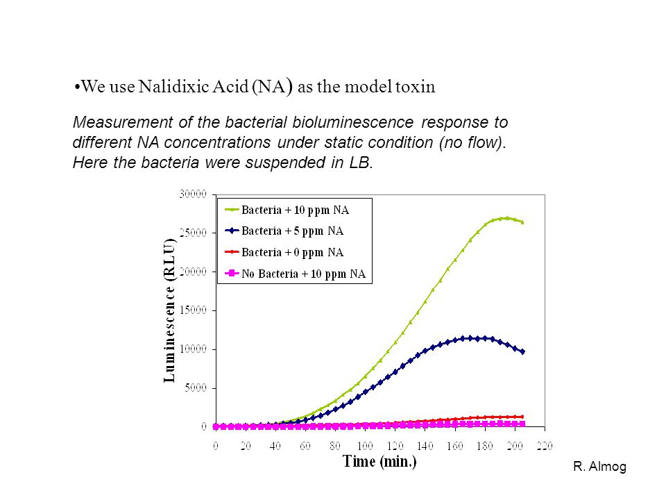 We use Nalidixic Acid (NA) as the model toxin