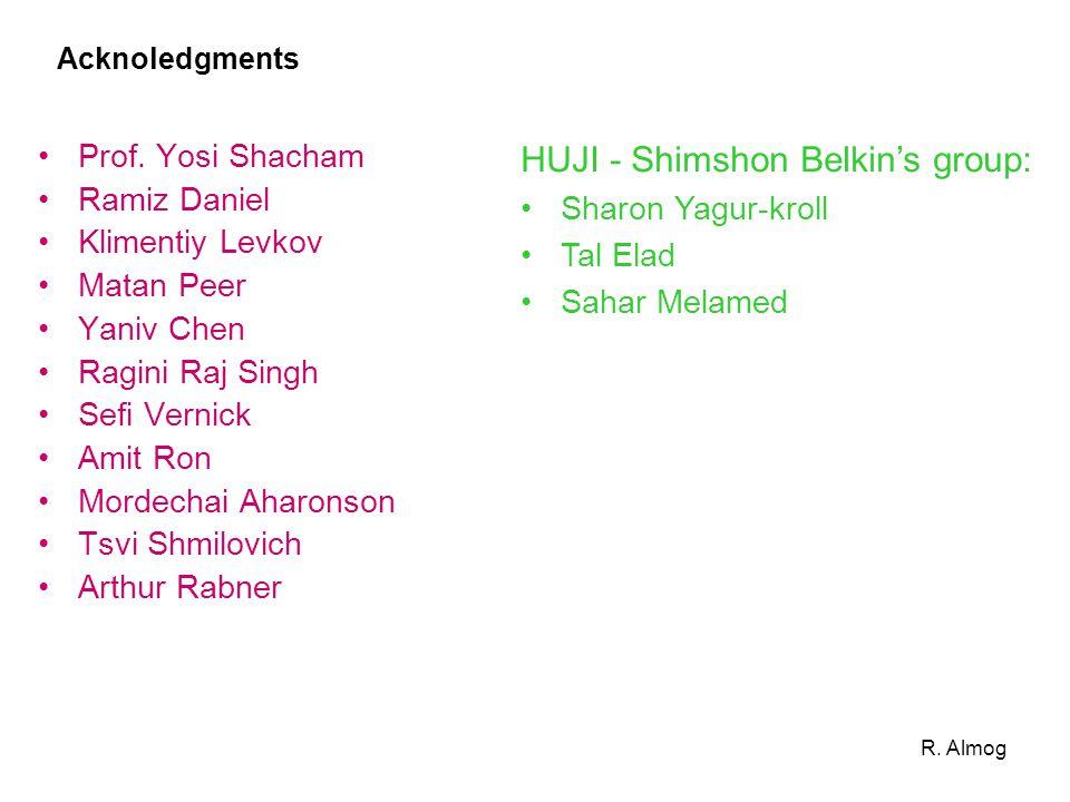 HUJI - Shimshon Belkin's group: