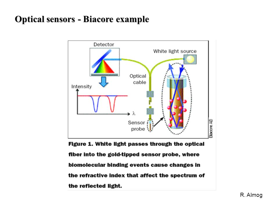 Optical sensors - Biacore example