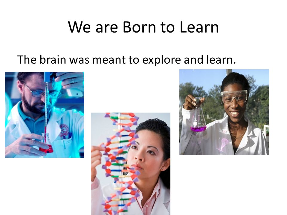 We are Born to Learn The brain was meant to explore and learn.