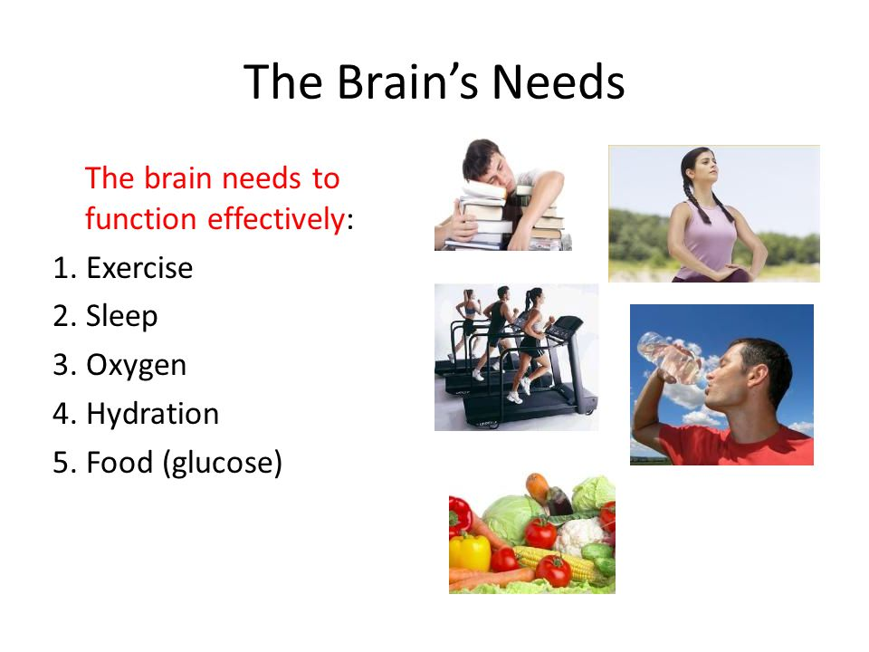 The Brain's Needs The brain needs to function effectively: 1.