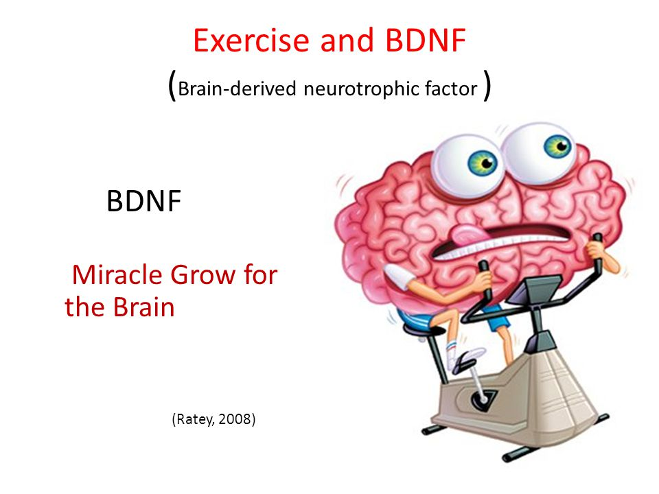 Exercise and BDNF (Brain-derived neurotrophic factor )