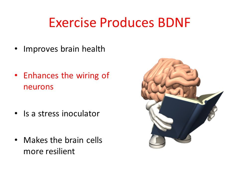 Exercise Produces BDNF