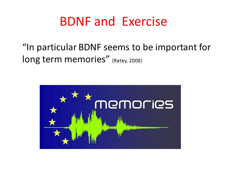 BDNF and Exercise In particular BDNF seems to be important for long term memories (Ratey, 2008)