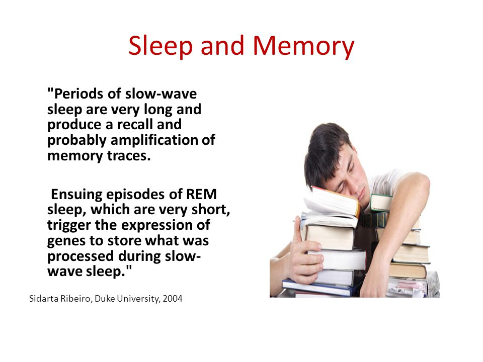 Sleep and Memory Periods of slow-wave sleep are very long and produce a recall and probably amplification of memory traces.