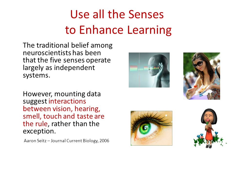 Use all the Senses to Enhance Learning