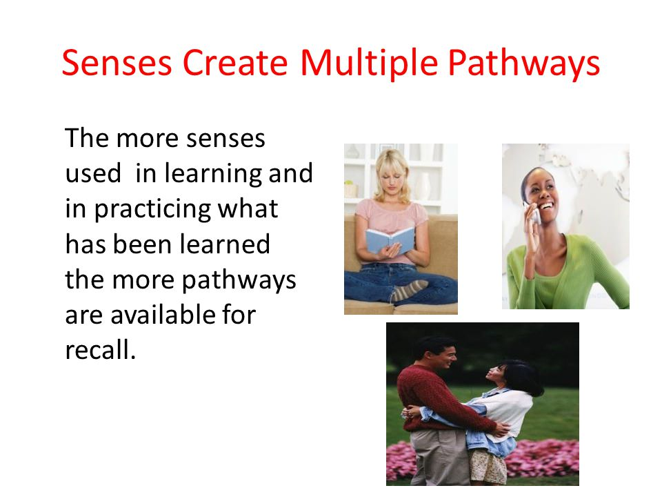 Senses Create Multiple Pathways