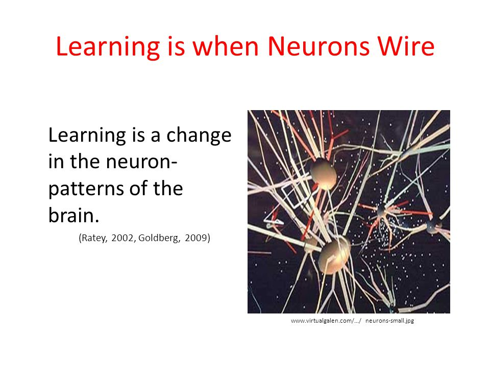 Learning is when Neurons Wire