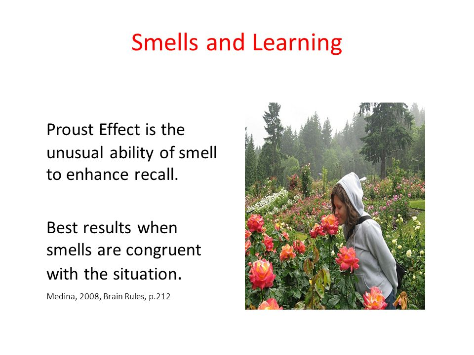 Smells and Learning Proust Effect is the unusual ability of smell to enhance recall. Best results when smells are congruent with the situation.