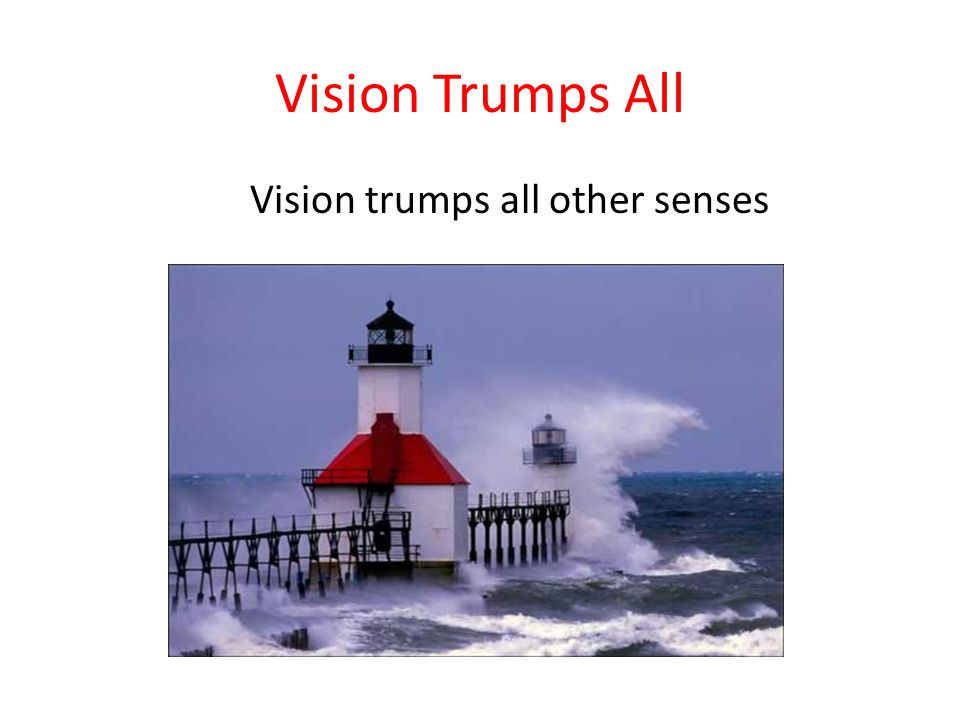 Vision Trumps All Vision trumps all other senses