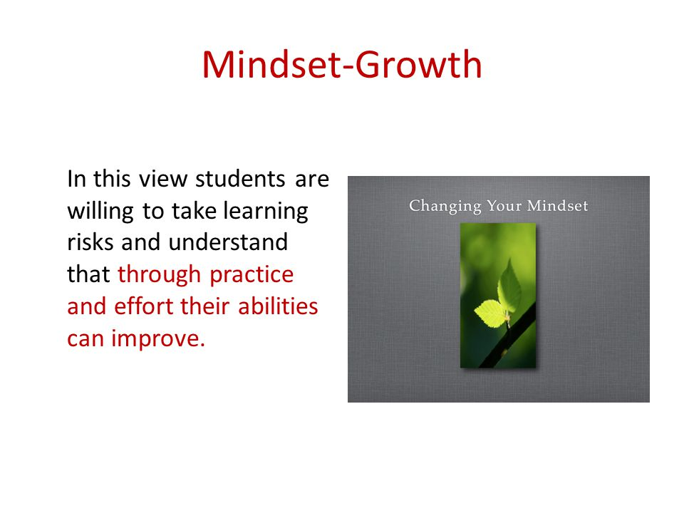Mindset-Growth In this view students are willing to take learning risks and understand that through practice and effort their abilities can improve.