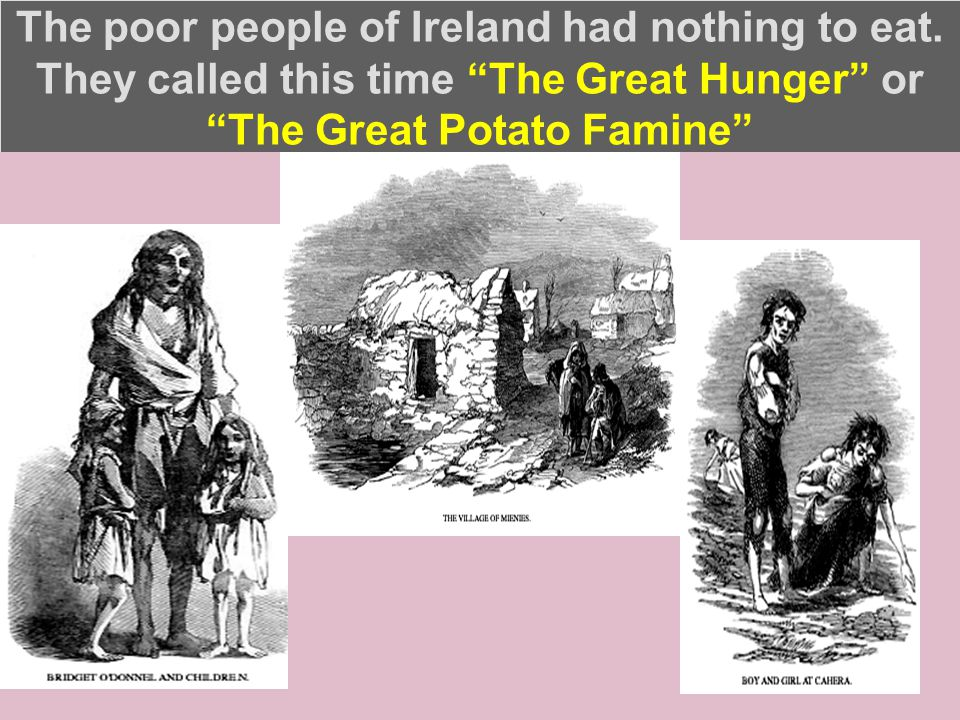 The poor people of Ireland had nothing to eat