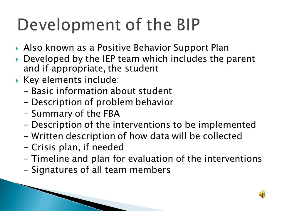 Development of the BIP Also known as a Positive Behavior Support Plan