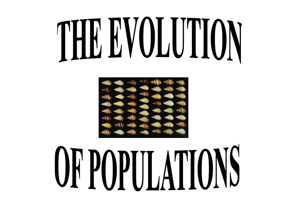 THE EVOLUTION OF POPULATIONS