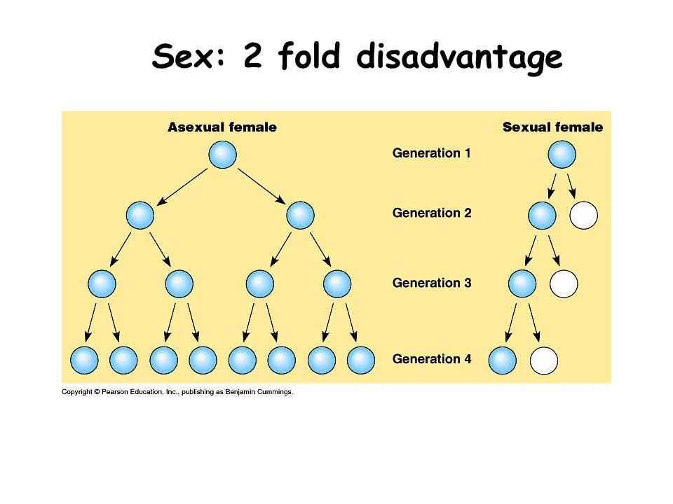 Sex: 2 fold disadvantage