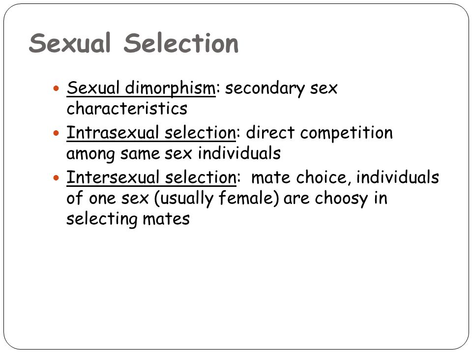 Sexual Selection Sexual dimorphism: secondary sex characteristics