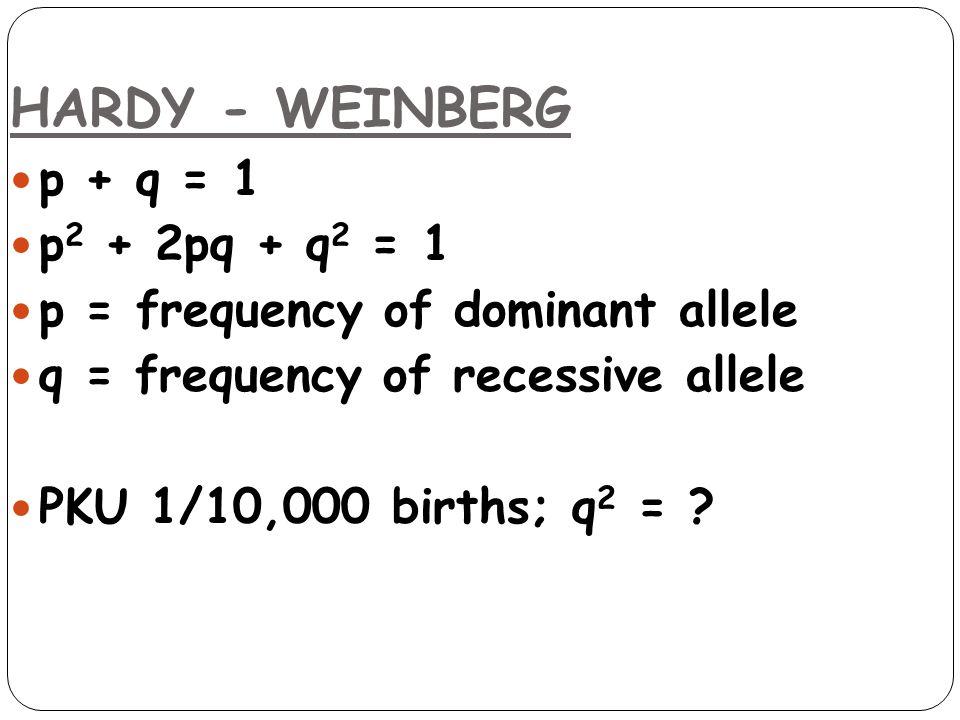 HARDY - WEINBERG p + q = 1 p2 + 2pq + q2 = 1